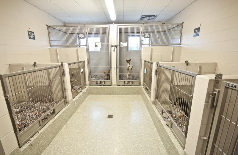 Washington County Animal Shelter